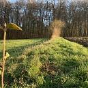 Winter 2020/2021 Ergänzung einer bestehenden Hecke auf 150 Meter lange auf der Südseite von Ranspach le Haut