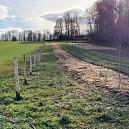 100 Meter Heckenpflanzung auf der Fuchswiese 2020