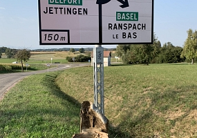 World Cleanup Day 2020 - Ranspach le Haut