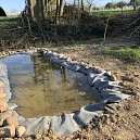 Anlage von Laichtümpeln und Kleingewässern für den Amphibienschutz