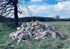 Geplant: Lesesteinhaufen & Trockenmauern für Reptilien, Amphibien und Insekten
