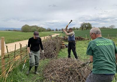 """Bau einer zweiten Totholzhecke (Benjeshecke) auf der """"Fuchswiese"""" in Ranspach le Haut"""